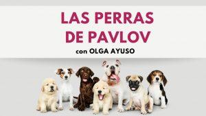 Las Perras de Pavlov - Psicoflix